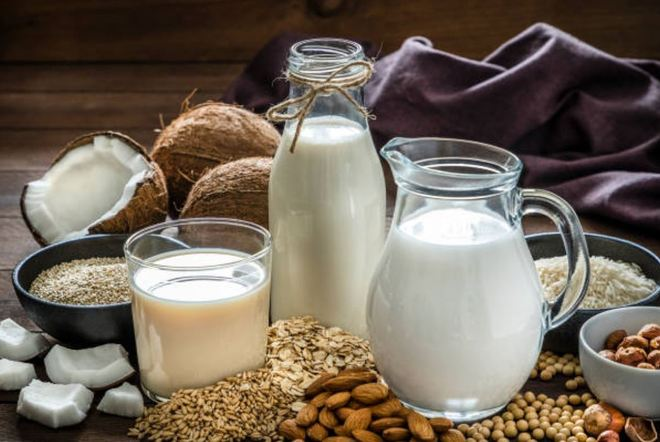 Can't use dairy names on plant products: National food regulator