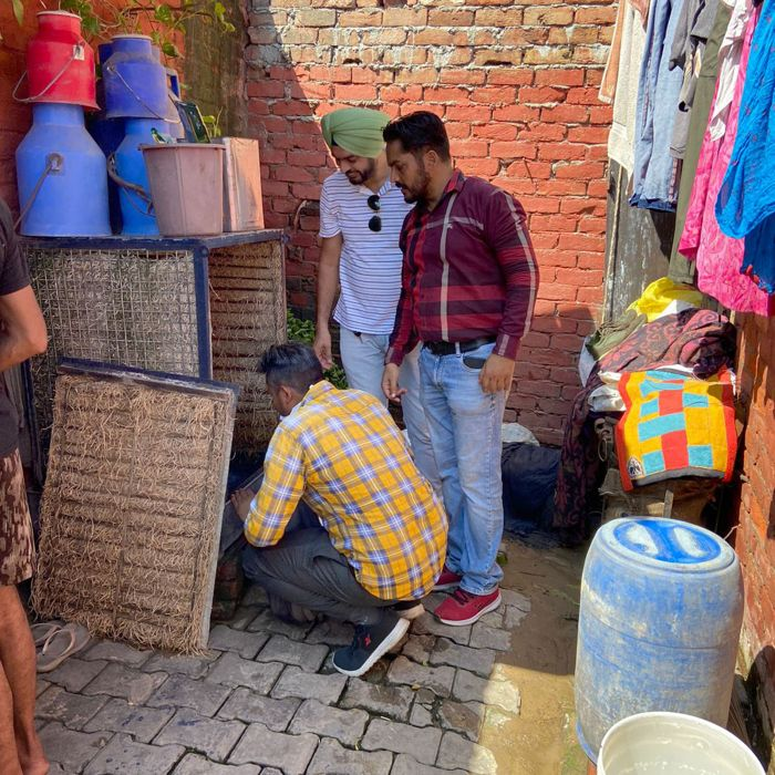 15 challans issued during drive against dengue in Patiala