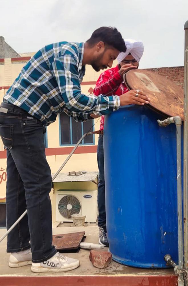 4-fold rise in Bathinda dengue cases