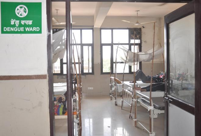Increasing dengue count rings alarm in Amritsar district