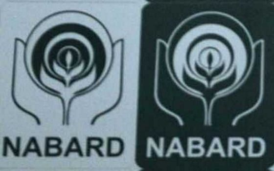Cluster office of NABARD opened in Amritsar's Ranjit Avenue