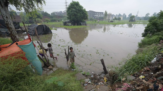 Buddha Nullah overflows, polluted water enters fields