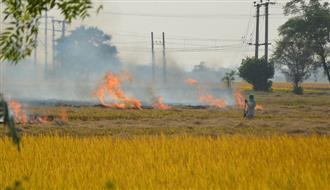 No to stubble burning, Ludhiana district's one-third villages take pledge