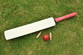 New rule: Batsman out, gender-neutral 'batter' in
